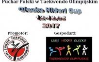 Puchar Polski w Taekwondo Olimpijskim 2017